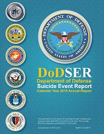 CY 2015 DoDSER Annual Report